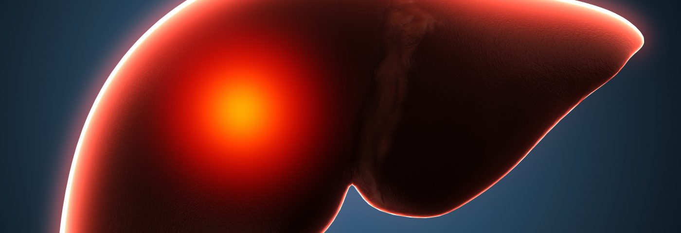 Researchers Surprised to Find Dying Red Blood Cells and Their Iron End Up in Liver, Not Spleen