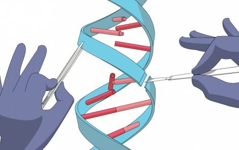 Intellia Uses Gene Editing to Replace Defective Blood Component in Sickle Cell Disease