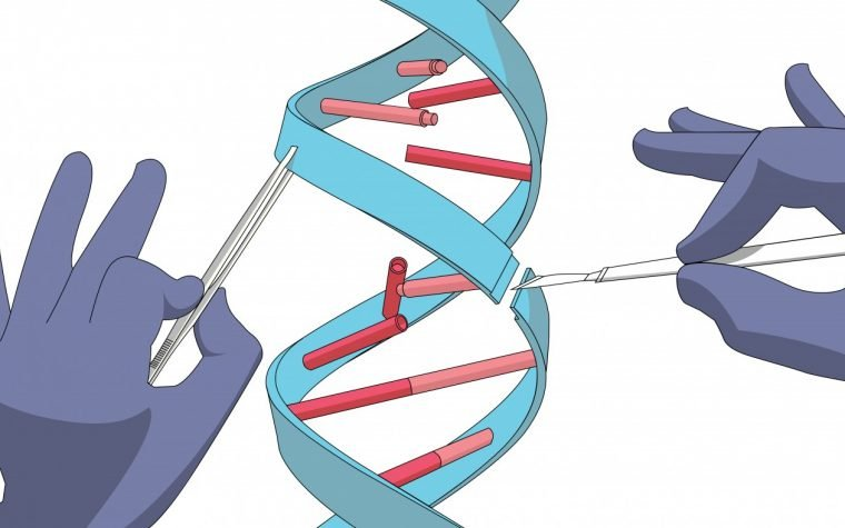 Sickle cell gene editing