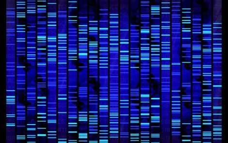 Sema4 and Helix Launch CarrierCheck, a Genetic Screen of 67 Hereditary Diseases
